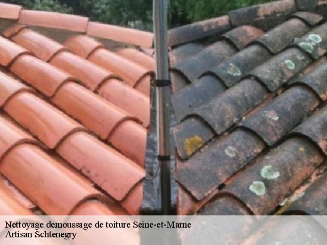 brosse nettoyage toiture entretien toiture with brosse nettoyage toiture accessoires de. Black Bedroom Furniture Sets. Home Design Ideas