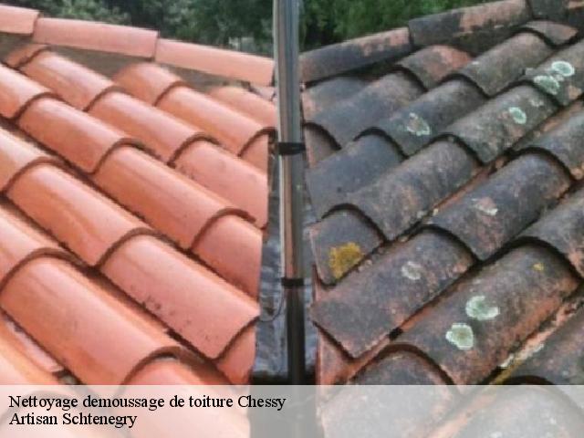nettoyage demoussage de toit chessy t l. Black Bedroom Furniture Sets. Home Design Ideas